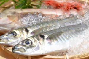 海の食べ物の英語